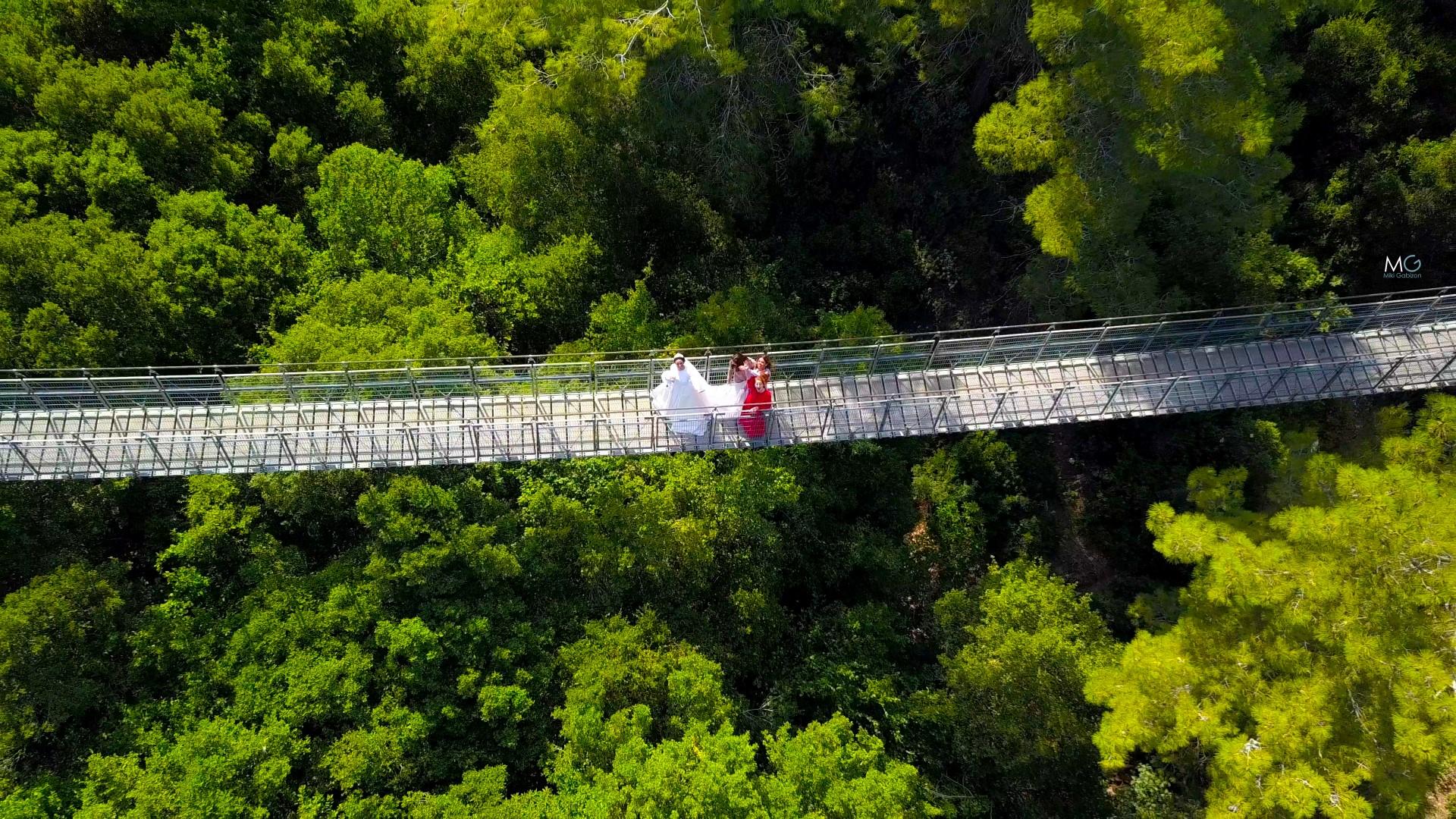 צילום רחפן כלה ביער מיקי גביזון